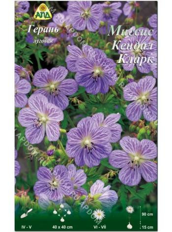 Герань луговая Миссис Кендал Кларк (Geranium pratense Mrs Kendall Clark)