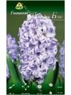 Гиацинт Дельфт Блю (Hyacinthus Delft Blue)