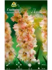 Гладиолус Ламбада Фриззл (Gladiolus Lambada Frizzle)