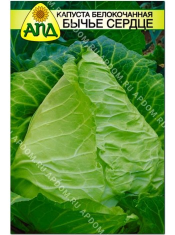 Капуста б/к Бычье Cердце (Brassica oleracea var.capitata alba)
