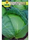 Капуста б/к Лангедейкер поздний (Brassica oleracea var.capitata alba)
