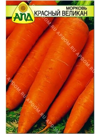 Морковь Красный Великан (Daucus carota L.)