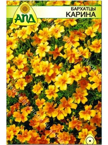Бархатцы Карина (Tagetes tenuifolia)
