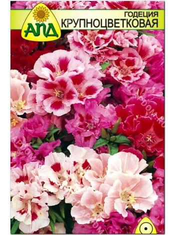 Годеция крупноцветковая (Godetia grandiflora)