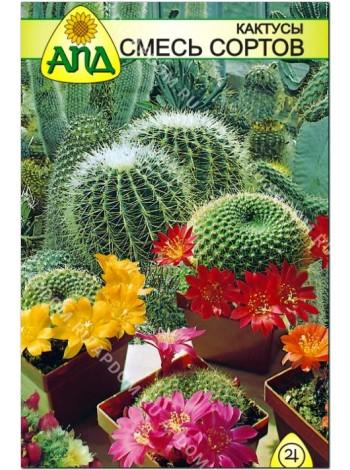Кактусы смесь сортов (Cactus)