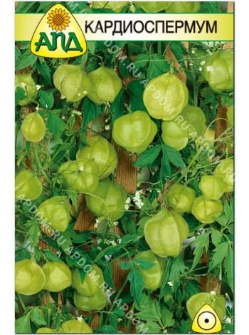 Кардиоспермум (Cardiospermum)