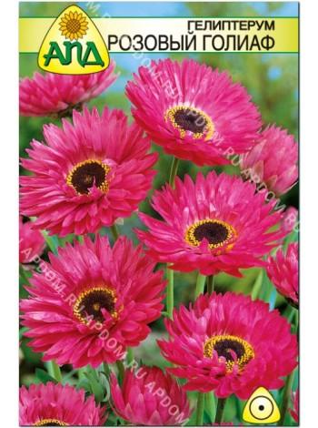 Гелиптерум розовый Голиаф (Helipterum roseum)